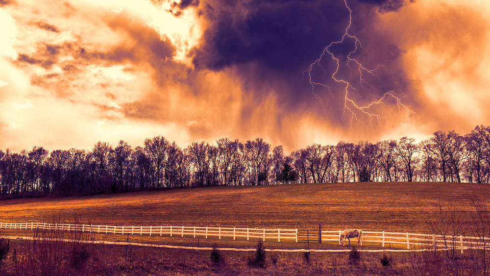 The storm hits an casts an ominous purple tone through the skies as the horses seek shelter - in New Melle, Missouri