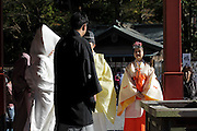 bride and groom leaving at the end of a traditional Shinto wedding ceremony Kamakura Japan