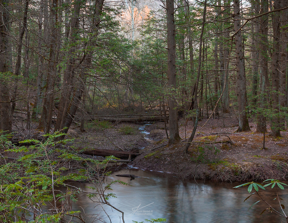 """I introduce to you """"Happy Little Moment"""". I hiked along Clark Creek in Dauphin, Pennsylvania in search of a magical moment. I passed this location, glanced at it, only to realize how truly special it was while on my return. In love with the outcome and can't wait to see the 35mm film version. Lesson learned as Bob Ross would say, """"We don't make mistakes, just happy accidents"""". Iso 250 24mm at F/16 4 sec. with a Breakthrough Photography X4 ND 6 stop filter."""