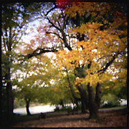 Autumn in Prospect Park, Brooklyn.
