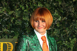 © Licensed to London News Pictures. 13/11/2016. London, UK, Mary Portas, Evening Standard Theatre Awards, Photo credit: Richard Goldschmidt/LNP