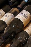 Old bottles 1997 vintage. Chateau St Martin de la Garrigue. Languedoc. Bottle cellar. France. Europe. Bottle.
