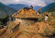 Thatching house, Landrung, Annapurna Trail, Nepal Himalaya