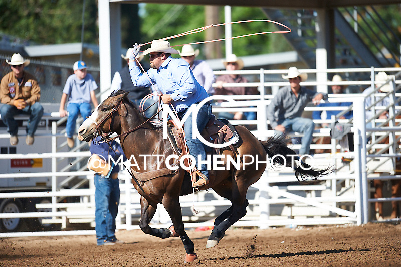 Team roper Blake Teixeira of Tres Pinos, CA competes at the Clovis Rodeo in Clovis, CA.<br /> <br /> <br /> UNEDITED LOW-RES PREVIEW<br /> <br /> <br /> File shown may be an unedited low resolution version used as a proof only. All prints are 100% guaranteed for quality. Sizes 8x10+ come with a version for personal social media. I am currently not selling downloads for commercial/brand use.