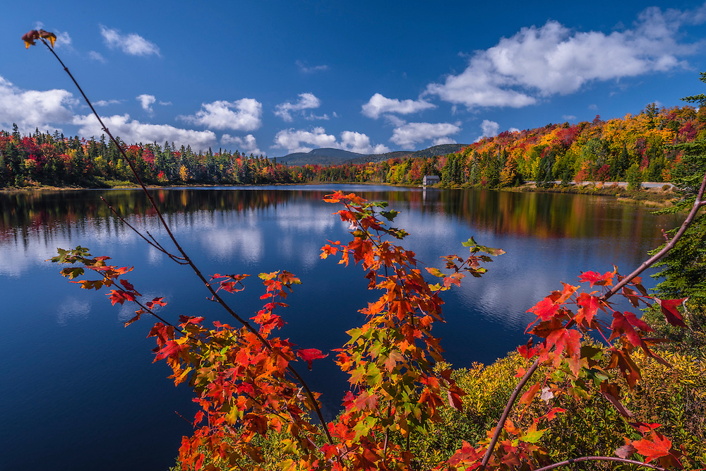 Maple branches in fall frame view to Beaver Pond, Township D, ME