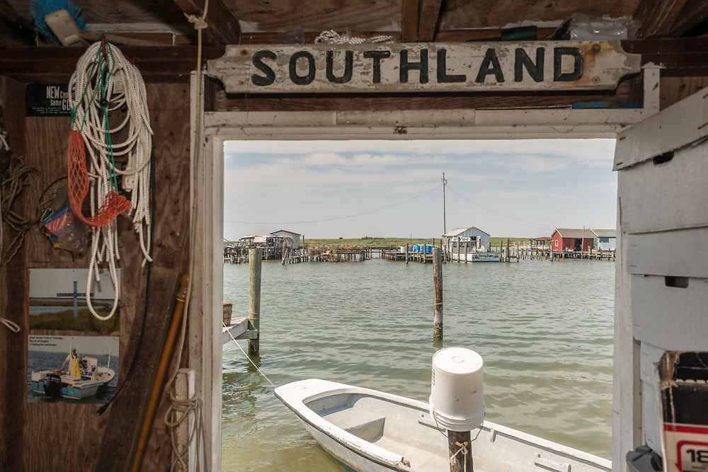 """August 4, 2017 - Tangier Island, VA - The view from the insdie of Tangier Mayor's James """"Ooker"""" Eskridge's crab shanty offers a view of the incoming watermen's boats coming in with their crab pots. Set on pilings hundreds of yards from shore, the little shacks, where watermen monitor crabs as they shed their hard shells to become soft-shells, are like Tangier itself: islands apart. Perched 12 miles from the Eastern Shore of Virginia, Tangier (about three miles long and 1 1/2 miles wide) is accessible only by boat or by plane; most visitors take the ferry. Boats outnumber cars, and almost everyone makes a living from the water.<br /> Photo by Susana Raab/Institute"""