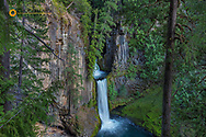 Toketee Falls runs over basaly columns in the Umpqua National Forest, Oregon, USA