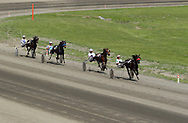 Goshen, NY -  Four horses head for the finish line during a harness race at Goshen's Historic Track on June 7, 2008.