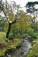 A rock lined stream running through a mossy area of the Kenrokuen Garden, Kanazawa, Ishigawa, Japan