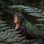 Todd Champagne, co-owner of Happy Girl Kitchen in Pacific Grove, Calif.