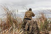 Photo No 1 of series - Hunter kills canvasback drake on open water marsh.