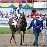King Edward Stakes 2019