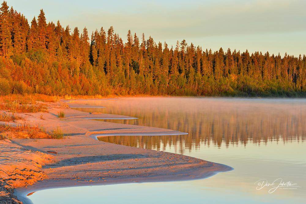 Pine Lake shoreline at sunrise, Wood Buffalo National Park, Alberta, Canada