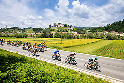Peloton during 3rd Stage of 27th Tour of Slovenia 2021 cycling race between Brezice and Krsko (165,8 km), on June 11, 2021 in Brezice - Krsko, Brezice - Krsko, Slovenia. Photo by Vid Ponikvar / Sportida