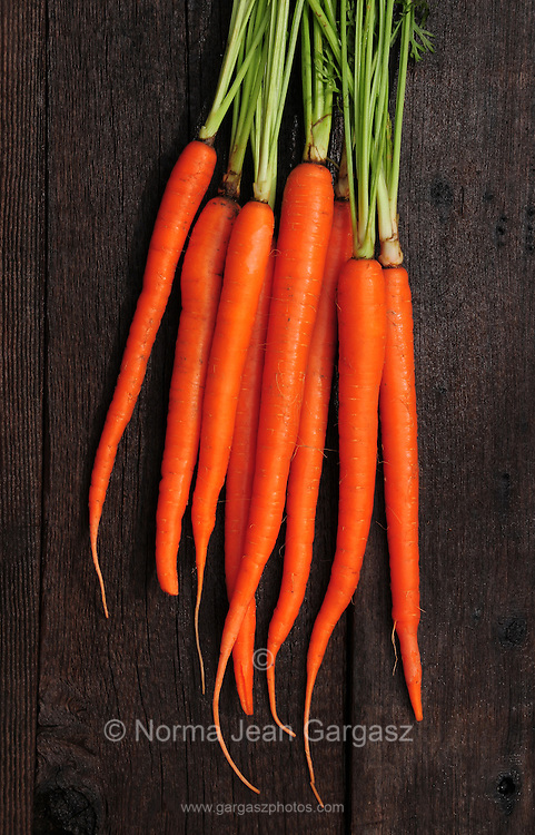 Freshly harvested certified organic bunch carrots.