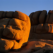 Rocks believed to be billions of years old glow with the last rays of evening in Joshua Tree National Park, CA.