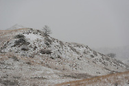 A late spring snow covers the landscape at Theodore Roosevelt National Park. <br /> <br /> Theodore Roosevelt National Park lies in western North Dakota, where the Great Plains meet the rugged Badlands. It's great habitat for bison, elk and prairie dogs. The Little Missouri River flows through the park.