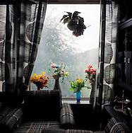 Anders Befrings window.Stardalen 7.sept 2008