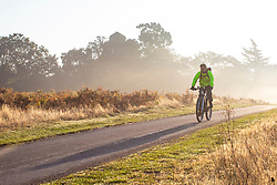 © Licensed to London News Pictures. 10/10/2018. London, UK. A cyclist at sunrise in Bushy Park, south London. Forecasters are expecting unusually warm temperatures for October. Photo credit: Rob Pinney/LNP