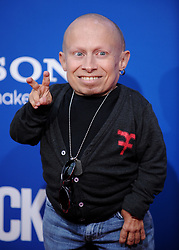 File photo - Verne Troyer attending The Columbia Pictures World Premiere of 'Jack and Jill' held at the Mann Village Theatre in West Hollywood, Los Angeles, CA, USA on November 6, 2011. Verne Troyer, who is best known for playing Mini-Me in the Austin Powers films, has died at the age of 49. Troyer, who was 81cm tall, also played Griphook in the first Harry Potter film. Photo by Lionel Hahn/ABACAPRESS.COM