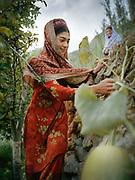 Famous women Pakistani climber.