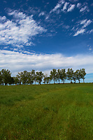Midwest Summer Sky Panorama. Rest Area along Interstate 29 in South Dakota. Image 2 of 9 taken with a Nikon D3x and 24 mm f/1.4G lens (ISO 100, 24 mm, f/11, 1/800 sec).