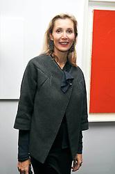 ALLEGRA HICKS at the Moet Hennessy Pavilion of Art & Design London Prize 2009 held in Berkeley Square, London on 12th October 2009.