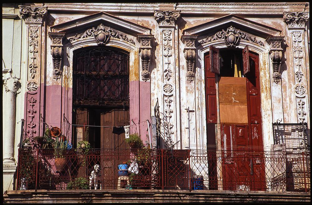 Dog on Balcony, Havana, Cuba