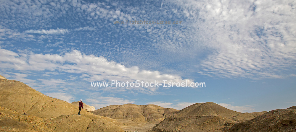 Mount Sodom (Hebrew: Har Sedom Arabic: Jebel Usdum) is a hill along the southwestern part of the Dead Sea in Israel, part of the Judean Desert Nature Reserve. Mount Sodom began its rise hundreds of thousands of years ago, and it continues to grow taller at a rate of 3.5 mm a year.