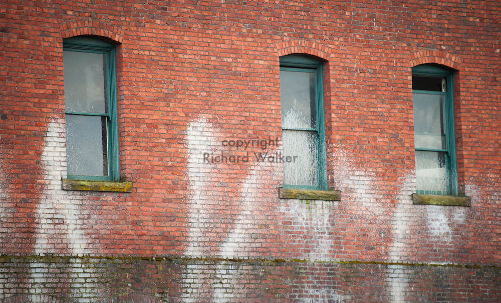2011 March 07 - Graffiti and windows on brick wall of the Fred Marino building in Georgetown, Seattle, WA. CREDIT: Richard Walker