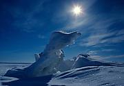 "Pressure Ridge looking like an ""ice dinosaur,"" frozen Rainy Lake, Voyageurs National Park, Minnesota."