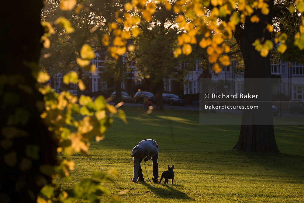 A dog owner bends down to pick up his dog's mess in an Autumnal park.
