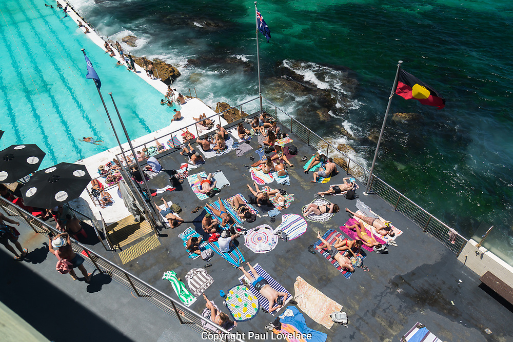 Locals and tourists sunbathing at Bondi Icebergs, Bondi, Beach, Sydney, Australia.