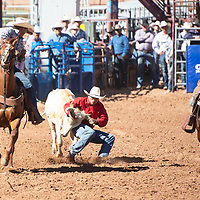 Jodie Matthew steer wrestling in the New Mexico High School Rodeo Association State Finals at Red Rock Park, Friday, May 24 in Church Rock.