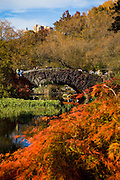 Autumn colors Gapstow bridge in Central Park in New York City.