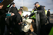 Climate activists block a road by Heathrow in protest against the proposed third runway November 19th 2016 in Heathrow, London,United Kingdom. A protestor is covered in protectiv gear before the police cut off the d-lock around her neck. Police were out in force and after 30 minutes the the roads were clear. 9 Arrests were made at this point of the protests which was part of larger act of civil disobedience.