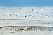 BAles in winter<br /> Viceroy<br /> Saskatchewan<br /> Canada