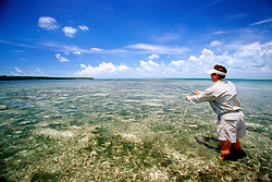 fly fishing for bonefish, .flats at Elliott Key, .Biscayne National Park, Florida (Atlantic)