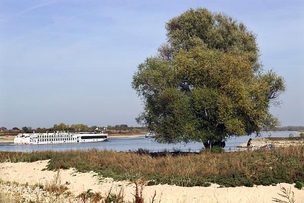 Nederland, the netherlands, Nijmegen, 19-10-2018 Een passagiersboot, cruiseschip, vaart in de Waal langs de drooggevallen oever. Door de aanhoudende droogte staat het water in de rijn, ijssel en waal extreem laag . Laagterecord en de laagste officiele stand ooit bij Lobith gemeten . Schepen moeten minder lading innemen om niet te diep te komen . Hierdoor is het drukker in de smallere vaargeul . Door te weinig regenval in het stroomgebied van de rijn is het record verbroken . Foto: Flip Franssen