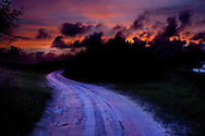 The road to the cemetery on the Island Isabela in the Galapagos, Ecuador at sunset.