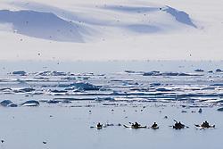 July 21, 2019 - Kayakers, Nunavut, Canada (Credit Image: © Richard Wear/Design Pics via ZUMA Wire)