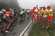 public, fans during the 73th Edition of the 2018 Tour of Spain, Vuelta Espana 2018, Stage 15 cycling race, 15th stage Ribera de Arriba - Lagos de Covadonga 178,2 km on September 9, 2018 in Spain - Photo Luis Angel Gomez/ BettiniPhoto / ProSportsImages / DPPI