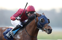 St Peters Basilica ridden by Robert Havlin wins the Ladbrokes Novice Stakes at Lingfield Racecourse, Lingfield.