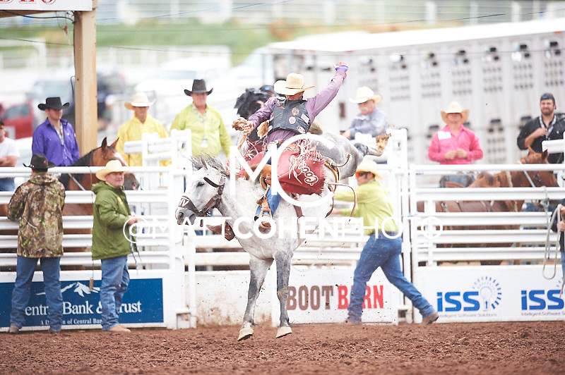 Saddle bronc rider Jesse Kirby of Ashland, KS rides Night Hawk at the Pikes Peak or Bust Rodeo in Colorado Springs, CO.<br /> <br /> <br /> UNEDITED LOW-RES PREVIEW<br /> <br /> <br /> File shown may be an unedited low resolution version used as a proof only. All prints are 100% guaranteed for quality. Sizes 8x10+ come with a version for personal social media. I am currently not selling downloads for commercial/brand use.