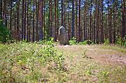 Leśno, 2011-07-09. Kurhan i kamienne kręgi na ścieżce lichenologiczno-kulturowej w Leśnie.