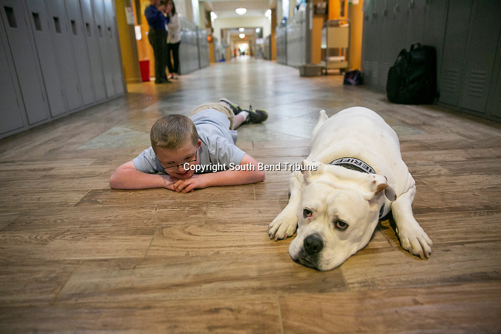 Eli Majewski lays down with Sheriff Bruno while visiting Queen of Peace School on Wednesday, May 8, 2019, in Mishawaka.