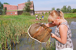Junior school girl standing beside pond examining contents of fishing net during biology fieldwork session,