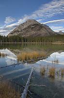 Buller Pond Spray Valley Provincial Park Alberta