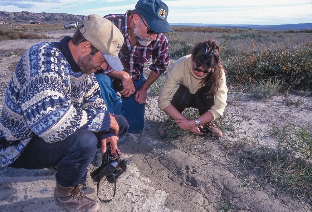 Amiran Kodiashvili, Pat O'Hasra and Eleanor O'Hanlon examine wildlife tracks, Vashlovani National Park, The Country of Georgia. Photo by Afanassi Makovnev, ©1999 Pat O'Hara