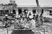 Group of men relaxing in shade of tree